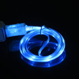 Fashionable Flowing LED Light Charger Cable
